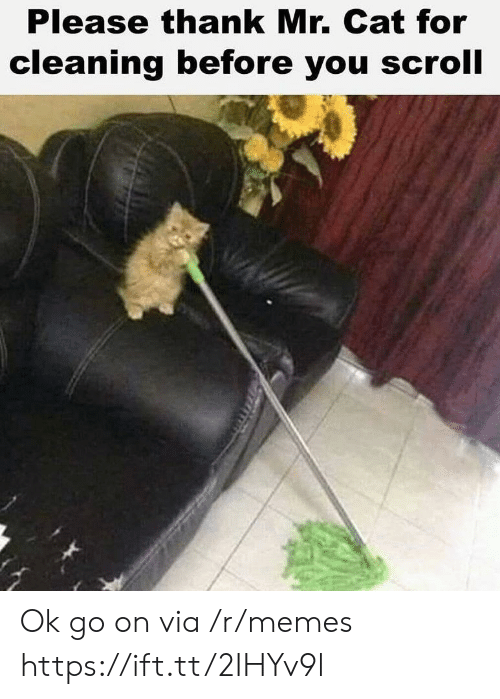 Memes, Cat, and Ok Go: Please thank Mr. Cat for  cleaning before you scroll Ok go on via /r/memes https://ift.tt/2IHYv9l