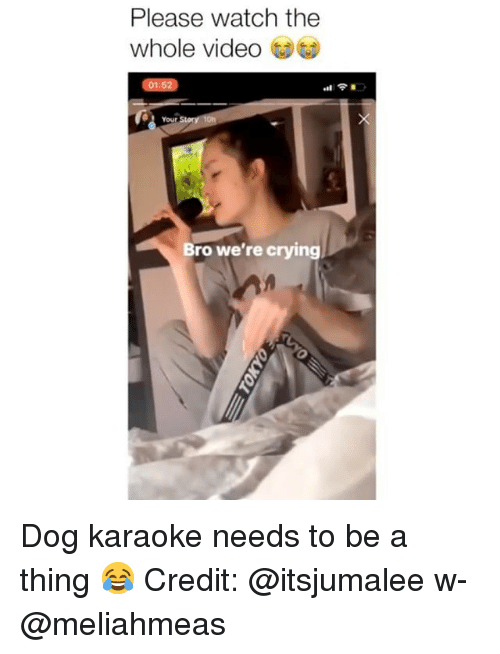 Crying, Memes, and Karaoke: Please watch the  whole video  01:52  Your  Bro we're crying Dog karaoke needs to be a thing 😂 Credit: @itsjumalee w- @meliahmeas