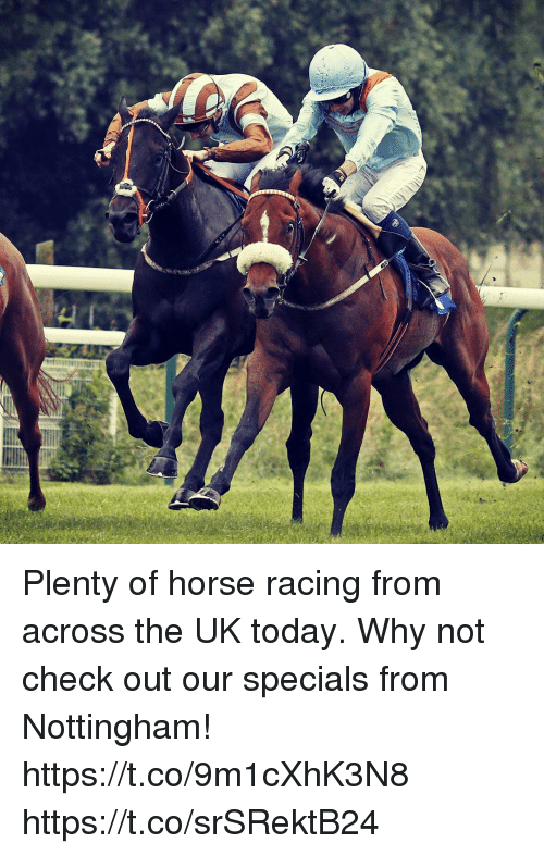 Plenty of Horse Racing From Across the UK Today Why Not