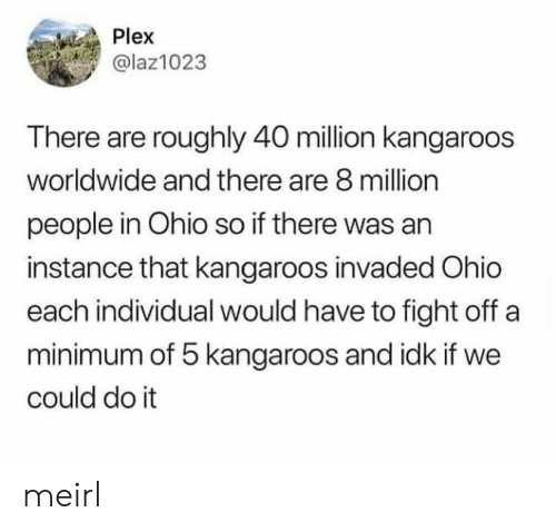 Plex There Are Roughly 40 Million Kangaroos Worldwide and