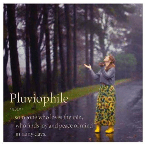 Pluviophile 1 Someone Who Loves the Rain Who Finds Joy and Peace of