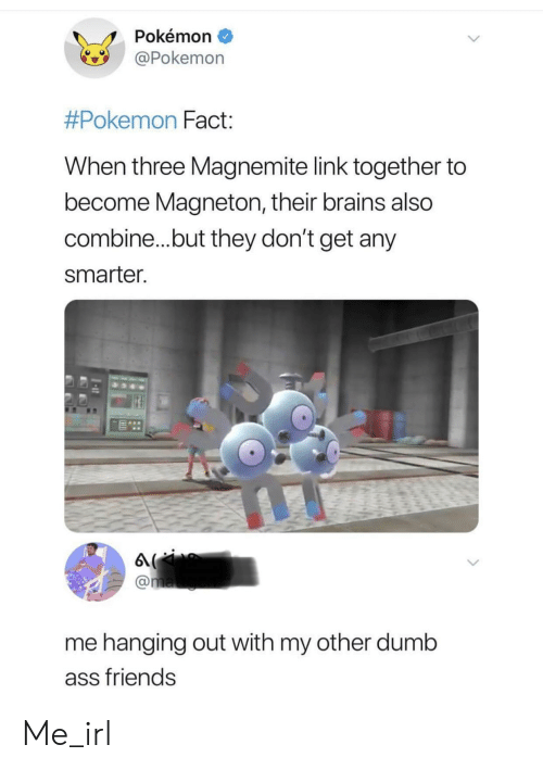 Brains, Dumb, and Friends: Pokémon  Pokemon  #Pokemon Fact  When three Magnemite link together to  become Magneton, their brains also  combine...but they don't get any  smarter  me hanging out with my other dumb  ass friends Me_irl