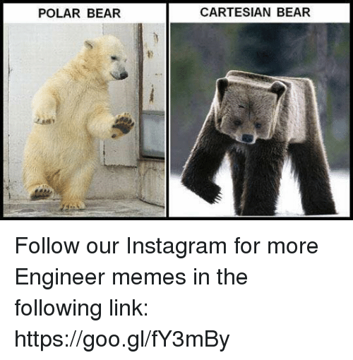 Instagram, Memes, and Bear: POLAR BEAR  CARTESIAN BEAR Follow our Instagram for more Engineer memes in the following link: https://goo.gl/fY3mBy