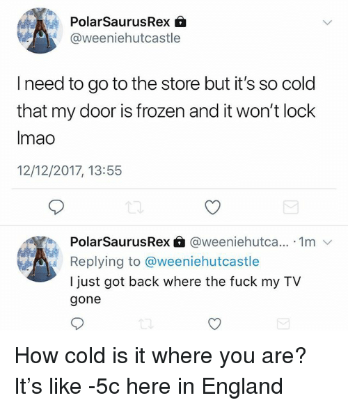 England, Frozen, and Memes: PolarSaurusRex 6  @weeniehutcastle  I need to go to the store but it's so cold  that my door is frozen and it won't lock  Imao  12/12/2017, 13:55  PolarSaurusRex @weeniehutca... 1m v  Replying to @weeniehutcastle  I just got back where the fuck my TV  gone How cold is it where you are? It's like -5c here in England