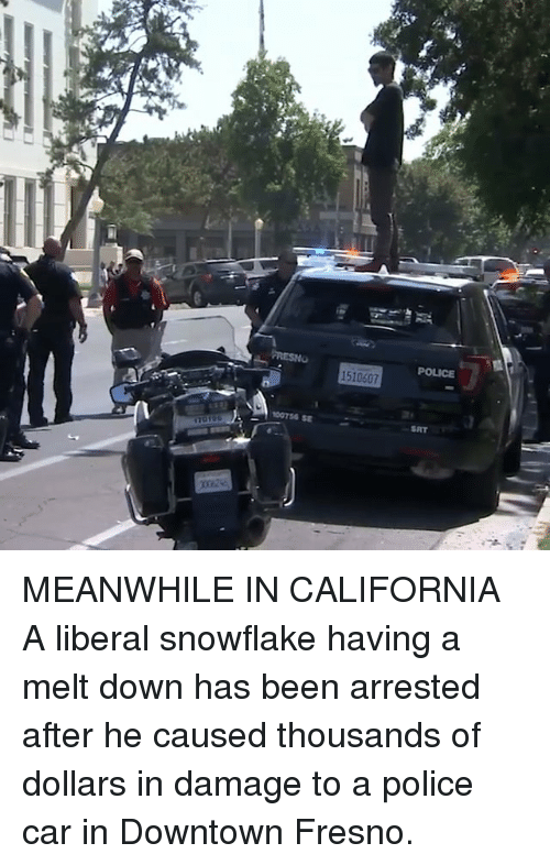 Memes, Police, and California: POLICE  1510607  00756 SE  SAT MEANWHILE IN CALIFORNIA A liberal snowflake having a melt down has been arrested after he caused thousands of dollars in damage to a police car in Downtown Fresno.