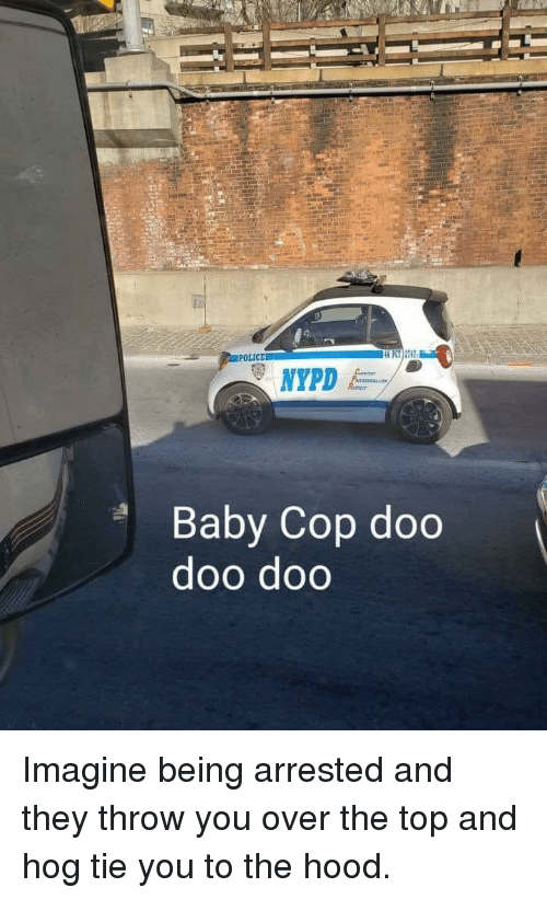 Police, The Hood, and Hood: POLICE  46 PT) 2742  Baby Cop doo  doo doo Imagine being arrested and they throw you over the top and hog tie you to the hood.
