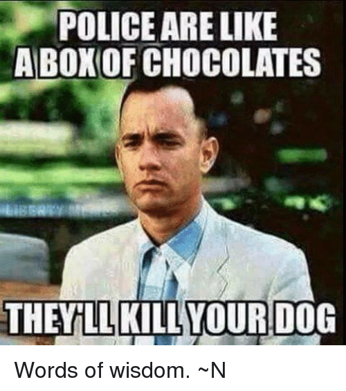 Police Arelike Abon Of Chocolates The Kill Your Dog Words Of Wisdom