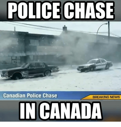 police chase canadian police chase breaking news in canada 9487312 ✅ 25 best memes about canadian police chase canadian police,Funny Canada Meme