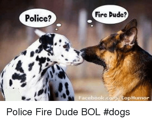 Dogs, Dude, and Facebook: Police?  Fire Dude?  Facebook.com Cop Humor Police     Fire Dude             BOL    #dogs