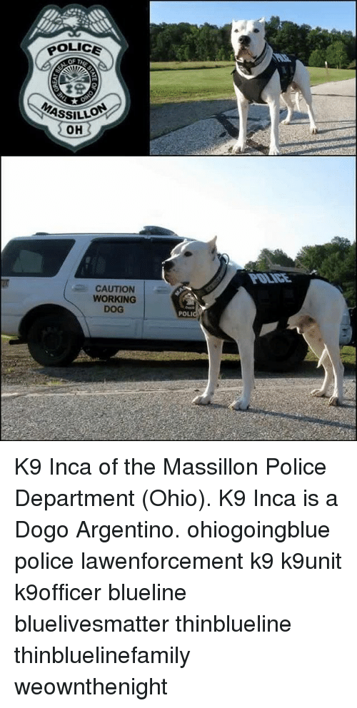 POLICE OF T ASSILLO OH CAUTION WORKING DOG POLI WARS K9 Inca