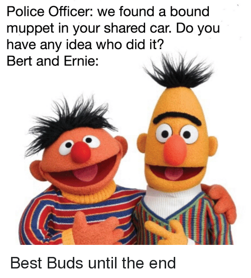 We Car: Police Officer We Found A Bound Muppet In Your Shared Car