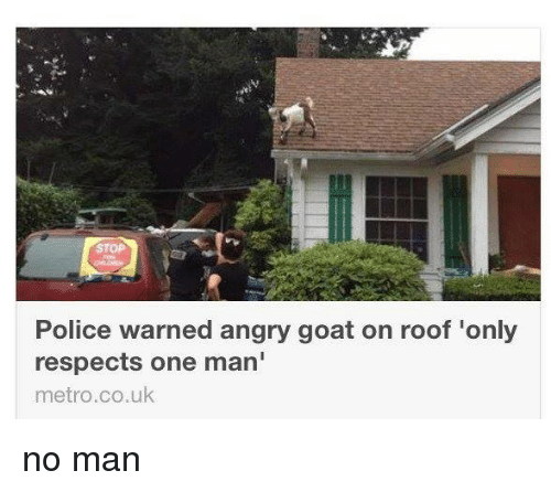 Goats, Roofing, And One Man: Police Warned Angry Goat On Roof Only Respects
