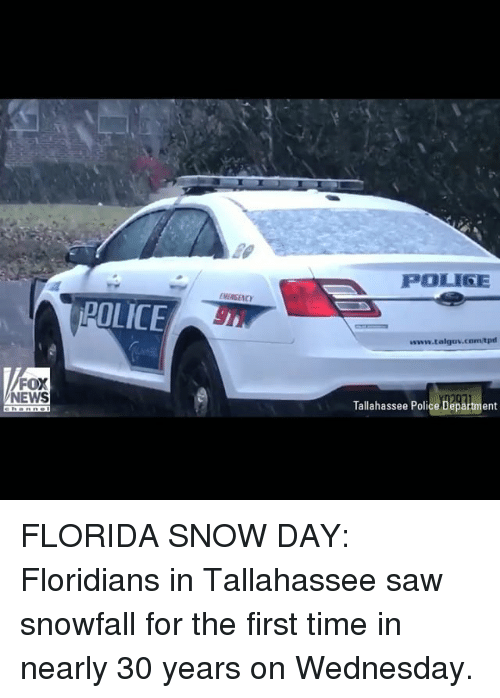 Memes, News, and Police: POLIGE  MERSENCY  POLICE  www.talgov.com/tpd  FOX  NEWS  Tallahassee Police Department FLORIDA SNOW DAY: Floridians in Tallahassee saw snowfall for the first time in nearly 30 years on Wednesday.