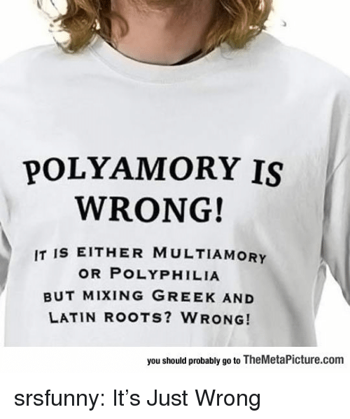 Tumblr, Blog, and Http: POLYAMORY IS  WRONG!  IT IS EITHER MULTIAMORY  OR POLYPHILIA  BUT MIXING GREEK AND  LATIN ROOTS? WRONG!  you should probably go to TheMetaPicture.com srsfunny:  It's Just Wrong