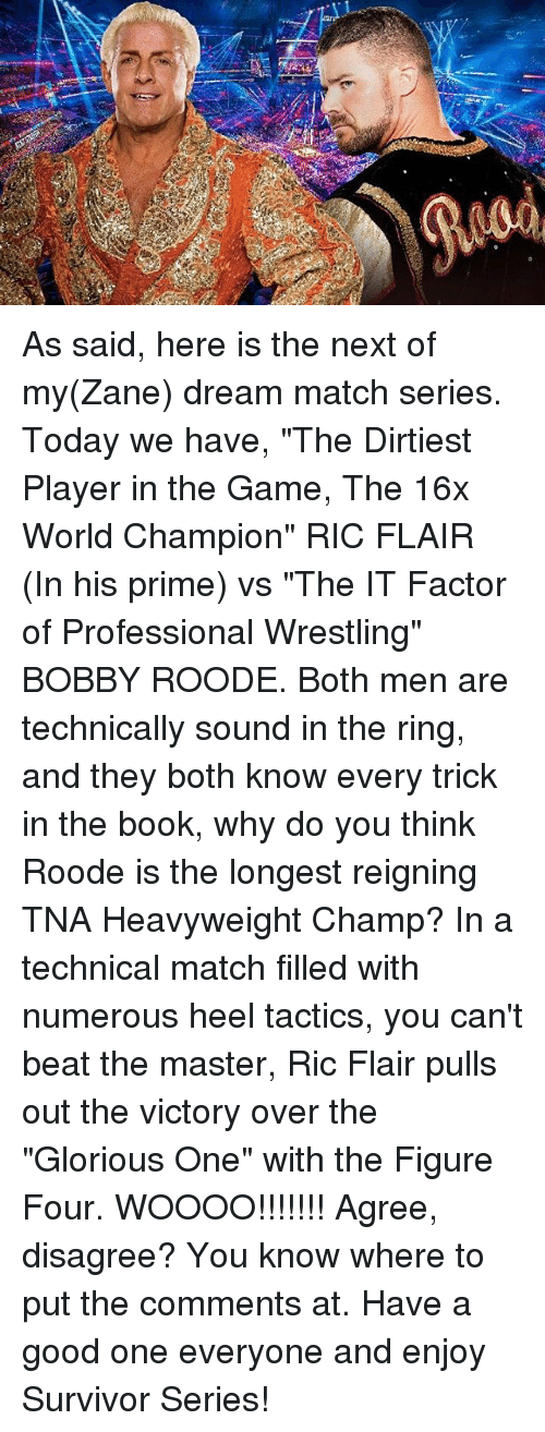 "Memes, The Game, and The Ring: pond As said, here is the next of my(Zane) dream match series. Today we have, ""The Dirtiest Player in the Game, The 16x World Champion"" RIC FLAIR (In his prime) vs ""The IT Factor of Professional Wrestling"" BOBBY ROODE. Both men are technically sound in the ring, and they both know every trick in the book, why do you think Roode is the longest reigning TNA Heavyweight Champ? In a technical match filled with numerous heel tactics, you can't beat the master, Ric Flair pulls out the victory over the ""Glorious One"" with the Figure Four. WOOOO!!!!!!! Agree, disagree? You know where to put the comments at. Have a good one everyone and enjoy Survivor Series!"