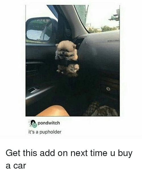 Memes, 🤖, and Add: pondwitch  it's a pupholder Get this add on next time u buy a car