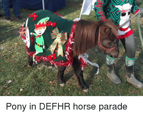 Christmas, Horse, and Pony: Pony in DEFHR horse parade