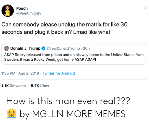A$AP Rocky, Android, and Dank: Pooch  @VeeAlmighty  Can somebody please unplug the matrix for like 30  seconds and plug it back in? Lmao like what  Donald J. Trump  @realDonaldTrump 20h  A$AP Rocky released from prison and on his way home to the United States from  Sweden. It was a Rocky Week, get home ASAP A$AP!  1:55 PM Aug 2, 2019 Twitter for Android  1.1K Retweets  5.7K Likes How is this man even real??? 😭 by MGLLN MORE MEMES