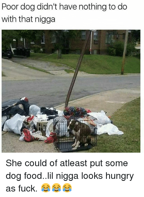 Food, Hungry, and Memes: Poor dog didn't have nothing to do  with that nigga She could of atleast put some dog food..lil nigga looks hungry as fuck. 😂😂😂