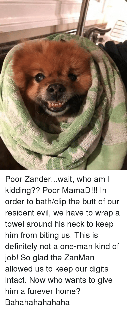 Poor Zanderwait Who Am I Kidding Poor Mamad In Order To