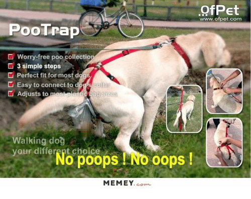Dogs, Memes, and Poop: PooTrap  Worry-free poo collectio  3 simple steps  Perfect fit for mos  diggs  Easy to connect to  Adjusts to  messen a  sizes  Walking dog  your o poops No oops  different choice  MEMEY  com  Poet  www.of pet.com