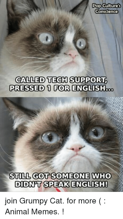 pop cultures conscience called tech support pressed 1 for english 16637768 ✅ 25 best memes about tech support tech support memes