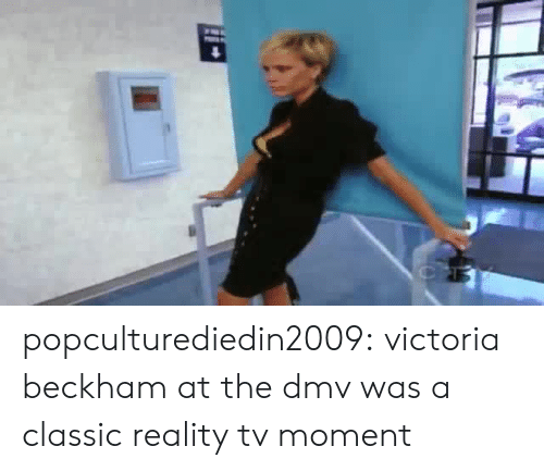 Dmv, Target, and Tumblr: popculturediedin2009: victoria beckham at the dmv was a classic reality tv moment