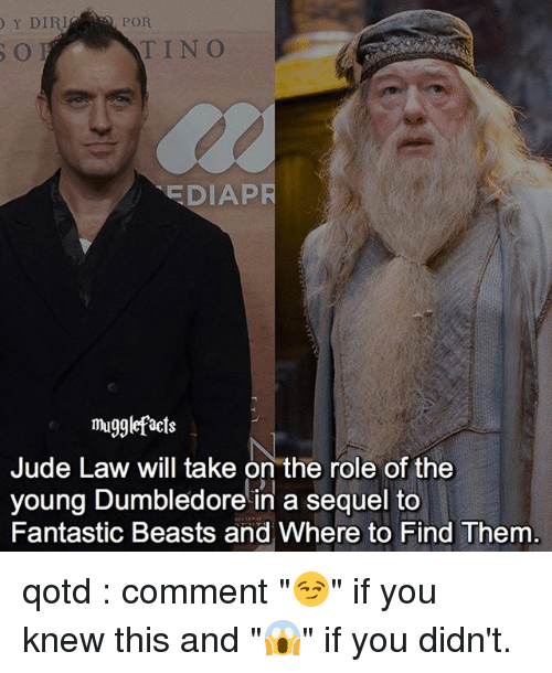 """Dumbledore, Memes, and Jude Law: POR  Y DIRI  TINO  EDIAPR  mugglefacts  Jude Law will take on the role of the  young Dumbledore in a sequel to  Fantastic Beasts and Where to Find Them qotd : comment """"😏"""" if you knew this and """"😱"""" if you didn't."""