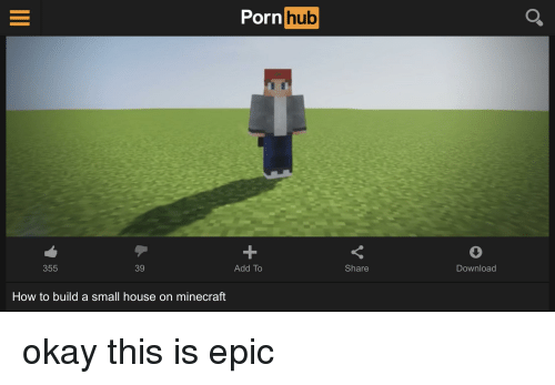 Minecraft, Porn Hub, and House: Porn hub Add To Share Download 355 39