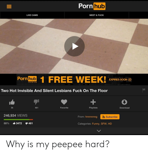 Funny, Lesbians, and Porn Hub: Porn  hub  LIVE CAMS  MEET & FUCK  Pornhub  FREE WEEK!0o o  EXPIRES SOON  PREMUM  Two Hot Invisible And Silent Lesbians Fuck On The Floor  3k  461  Favorite  Playlists  Download  246,934 VIEWS  From: hnnnnnng  Subscribe  88% -3472 461  Categories: Funny, SFW, HD Why is my peepee hard?