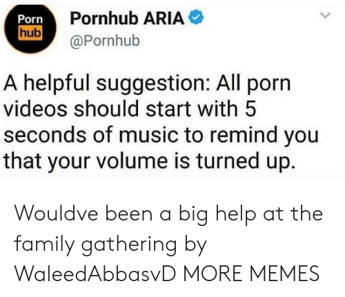 Dank, Family, and Memes: Porn  hub  Pornhub ARIA  @Pornhub  A helpful suggestion: All porn  videos should start with 5  seconds of music to remind you  that your volume is turned up. Wouldve been a big help at the family gathering by WaleedAbbasvD MORE MEMES