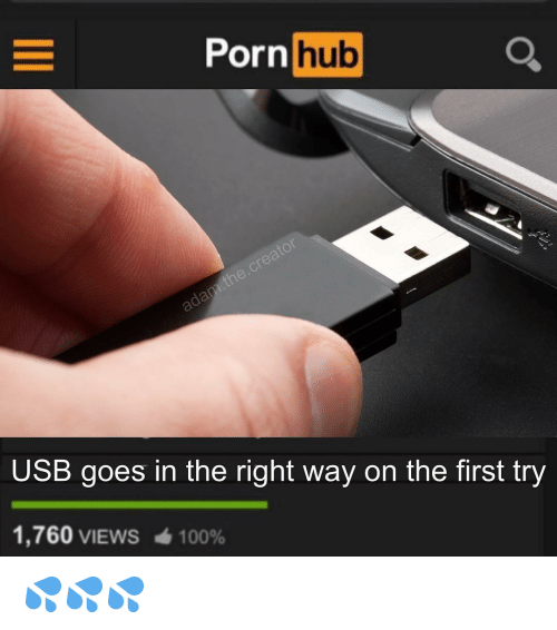 Anaconda, Memes, and Porn Hub: Porn  hub  USB goes in the right way on the first try  1,760 VIEWS  100% 💦💦💦