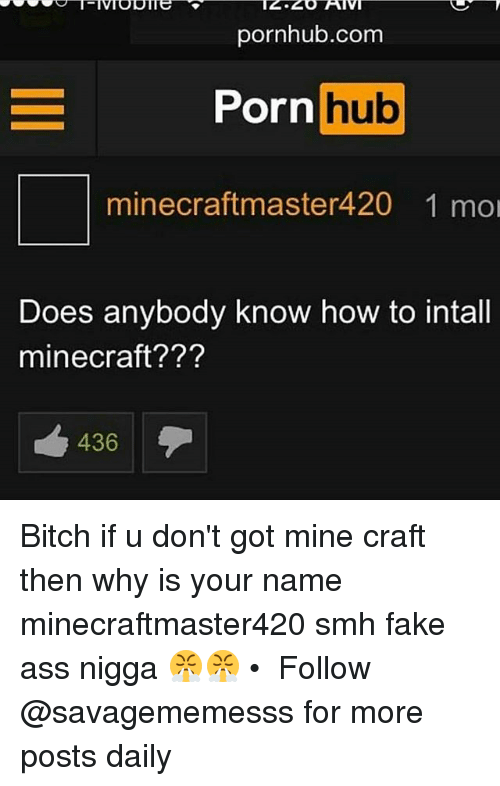 Memes, 🤖, and Mine Craft: pornhub.com  Porn hub  minee craft master420 1 mol  Does anybody know how to intall  mine craft???  436 Bitch if u don't got mine craft then why is your name minecraftmaster420 smh fake ass nigga 😤😤 • ➫➫ Follow @savagememesss for more posts daily