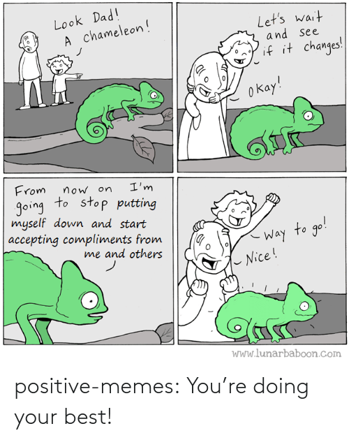 Memes, Tumblr, and Best: positive-memes:  You're doing your best!