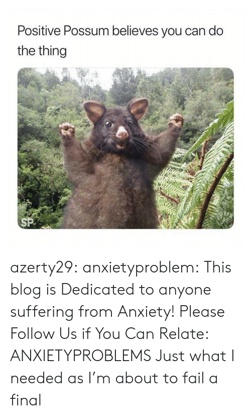 Positive Possum Believes You Can Do the Thing Azerty29