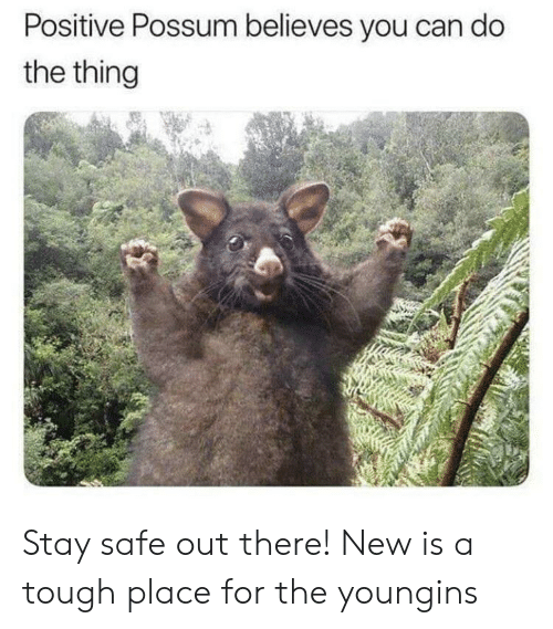Positive Possum Believes You Can Do the Thing Stay Safe Out