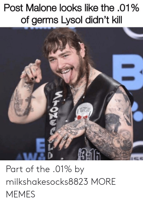 Dank, Memes, and Post Malone: Post Malone looks like the .01%  of germs Lysol didn't kill Part of the .01% by milkshakesocks8823 MORE MEMES