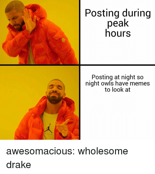 Drake, Memes, and Tumblr: Posting during  peak  hours  Posting at night so  night owls have memes  to look at awesomacious:  wholesome drake