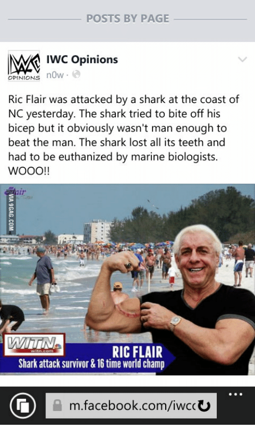 posts by page iwc opinions opinions now ric flair was 17916420 ✅ 25 best memes about ric flair meme ric flair memes