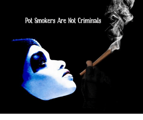 Memes, 🤖, and Pot: Pot Smokers Are Not Criminals