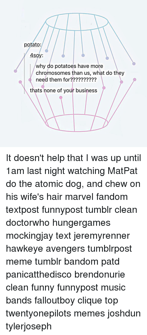Clique, Funny, and Meme: potato:  4soy:  why do potatoes have more  chromosomes than us, what do they  need them for  thats none of your business It doesn't help that I was up until 1am last night watching MatPat do the atomic dog, and chew on his wife's hair marvel fandom textpost funnypost tumblr clean doctorwho hungergames mockingjay text jeremyrenner hawkeye avengers tumblrpost meme tumblr bandom patd panicatthedisco brendonurie clean funny funnypost music bands falloutboy clique top twentyonepilots memes joshdun tylerjoseph