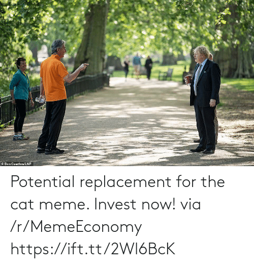Meme, Cat, and Invest: Potential replacement for the cat meme. Invest now! via /r/MemeEconomy https://ift.tt/2Wl6BcK
