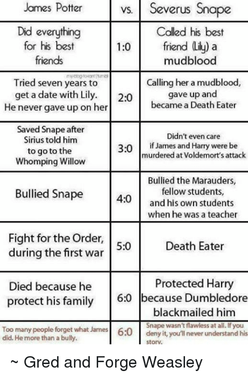 Potter S James Potter VS vs Severus Snape Did Everything for His