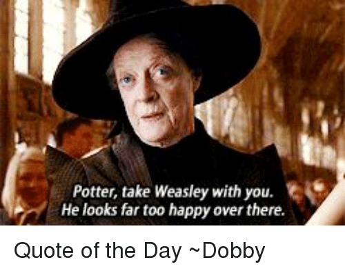 Memes, 🤖, and Potter: Potter, take Weasley with you.  He looks far too happy over there. Quote of the Day ~Dobby