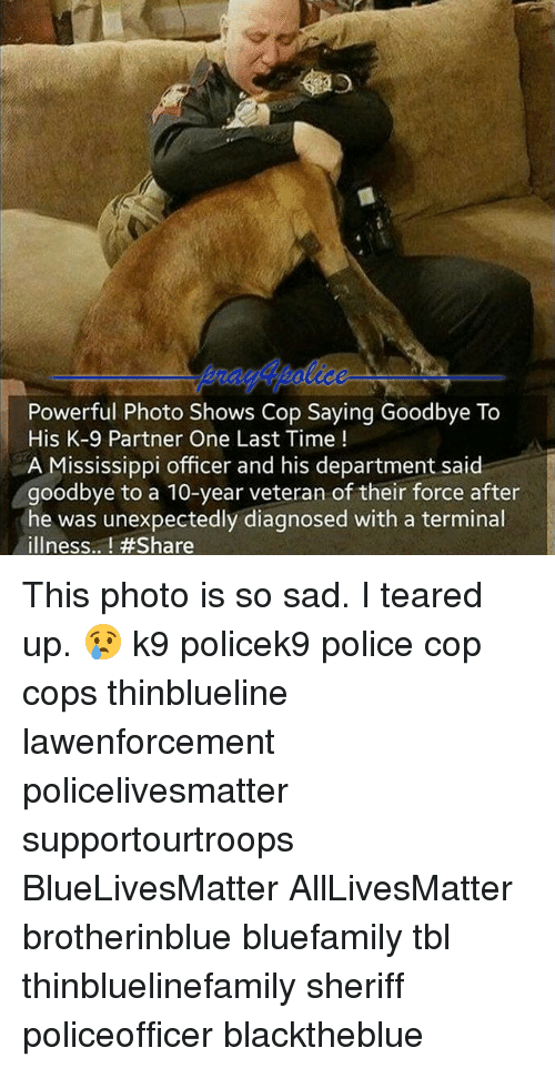 All Lives Matter, Memes, and Police: Powerful Photo Shows Cop Saying Goodbye To  His K-9 Partner One Last Time  A Mississippi officer and his department said  goodbye to a 10-year veteran of their force after  he was unexpectedly diagnosed with a terminal  illness.. This photo is so sad. I teared up. 😢 k9 policek9 police cop cops thinblueline lawenforcement policelivesmatter supportourtroops BlueLivesMatter AllLivesMatter brotherinblue bluefamily tbl thinbluelinefamily sheriff policeofficer blacktheblue