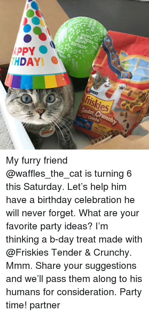 Memes, 🤖, and Cat: PPY  HDAY  DAY  BIRTHDAY H  SPURNA  friskies My furry friend @waffles_the_cat is turning 6 this Saturday. Let's help him have a birthday celebration he will never forget. What are your favorite party ideas? I'm thinking a b-day treat made with @Friskies Tender & Crunchy. Mmm. Share your suggestions and we'll pass them along to his humans for consideration. Party time! partner