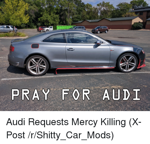 PRAY FOR AUDI Audi Requests Mercy Killing XPost RShittyCarMods - Audi car near me