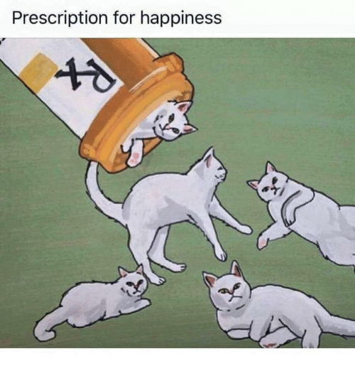 Memes, Happiness, and 🤖: Prescription for happiness
