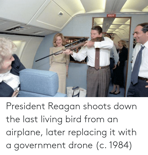 Drone, Airplane, and Government: President Reagan shoots down the last living bird from an airplane, later replacing it with a government drone (c. 1984)