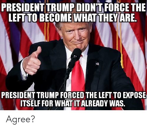 Memes, Trump, and 🤖: PRESIDENT TRUMP DIDNT FORCE THE  LEFT TO BECOME WHAT THEY ARE.  PRESIDENT TRUMP FORCED THE LEFT TO EXPOSE  ITSELF FOR WHATITALREADY WAS, Agree?